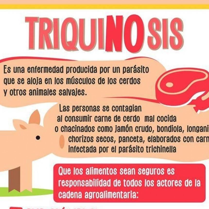Recomendaciones para evitar la Triquinosis