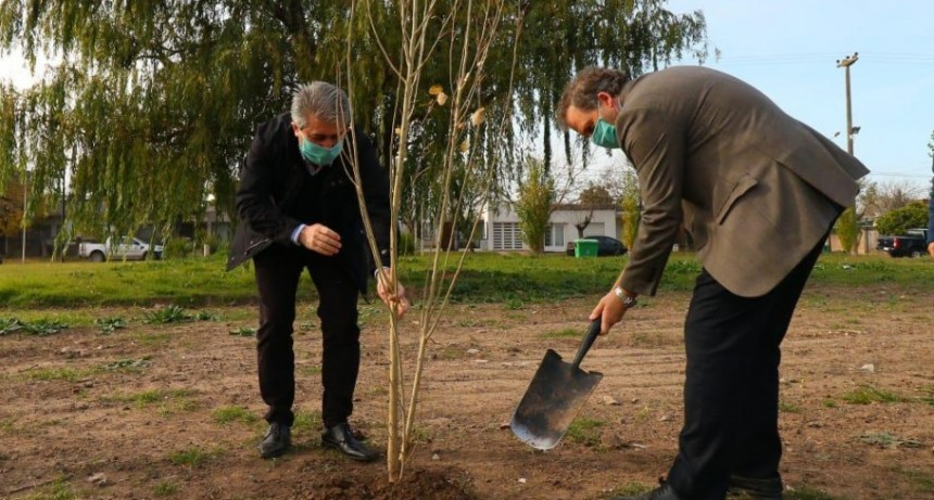 Se realizó la plantación del árbol fundacional del Parque Belgrano