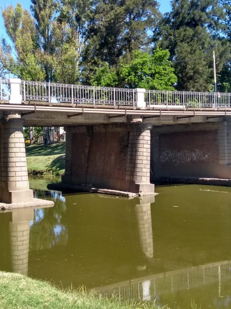 Llevarán a cabo obras para el puente Colón-Illia